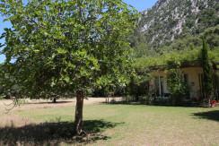 unique villas mallorca summer house for sale in Pollensa garden
