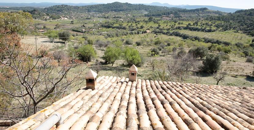 uniquevillasmallorca finca for sale in alaro view