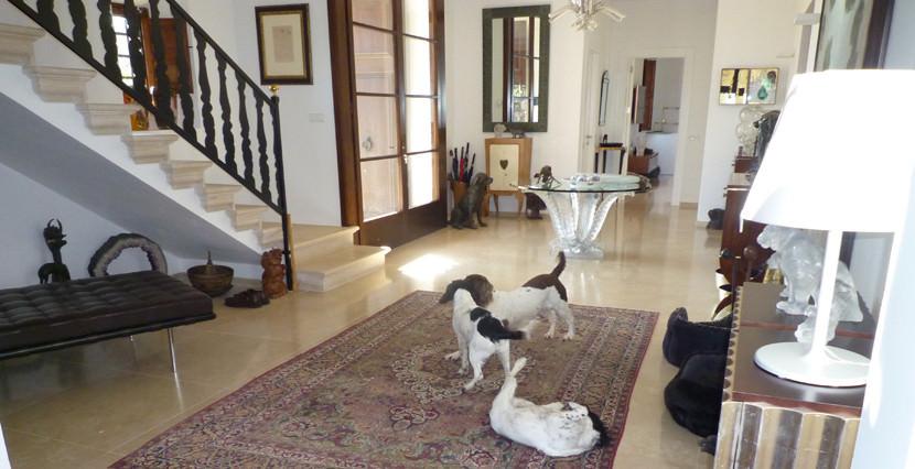 uniquevillasmallorca finca for sale in sencelles entrance indoor
