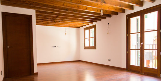 Reformed Apartment for Sale in Palma Center