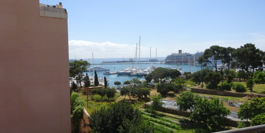 Apartment with Seaviews for Sale in Paseo Maritimo