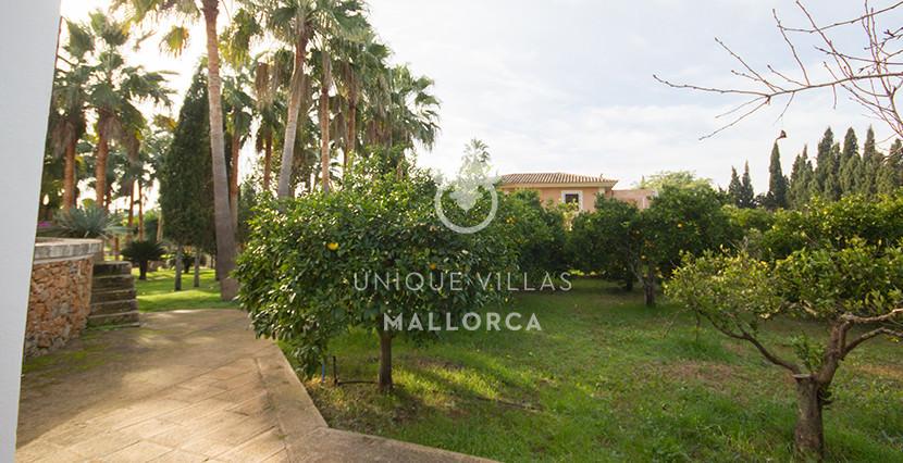 unique villas mallorca finca for sale in sencelles garden
