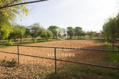 unique villas mallorca finca for sale in sencelles horse area