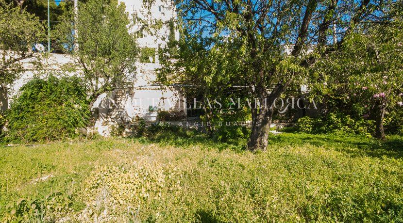 unique property for sale near palma uvm195.13