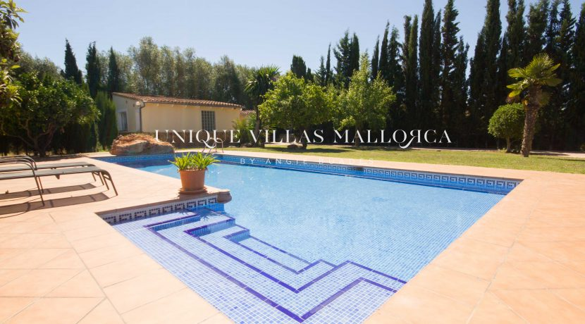 property-for-sale-in-santamariao-uvm.215.6