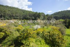 country-house-for-sale-in-calvia-uvm236.27