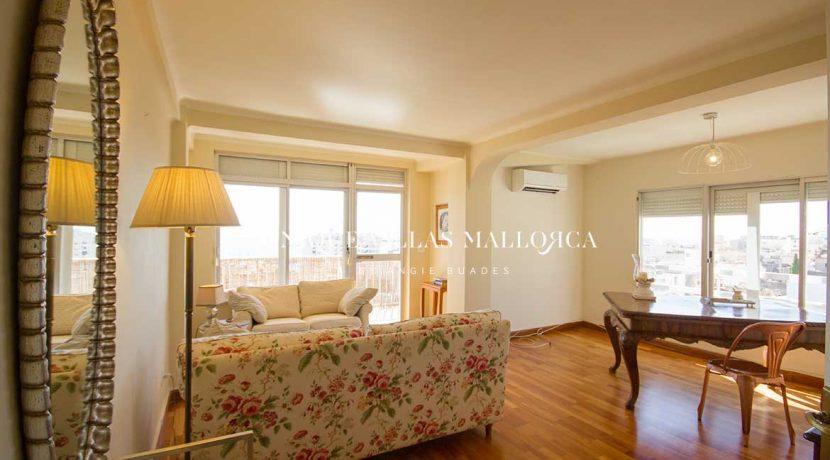 flat-for-rent-in-el-terreno-uvm251.13