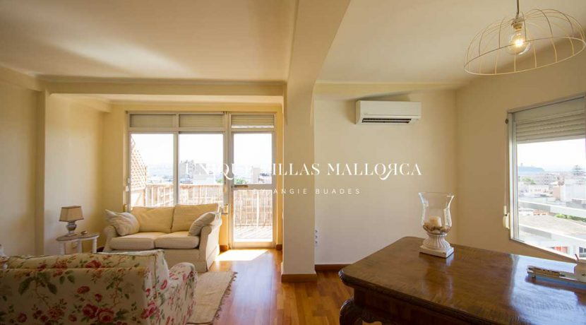 flat-for-rent-in-el-terreno-uvm251.20