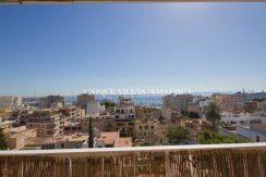 flat-for-rent-in-el-terreno-uvm251.7