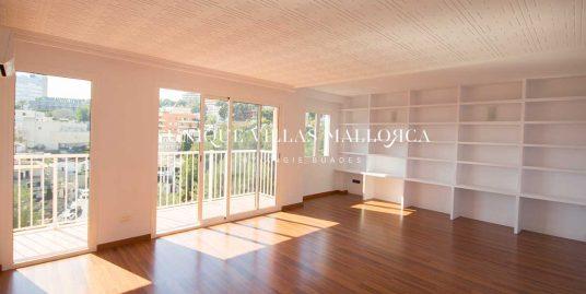 Sunny one bedroom apartment for rent in El Terreno-uvm260