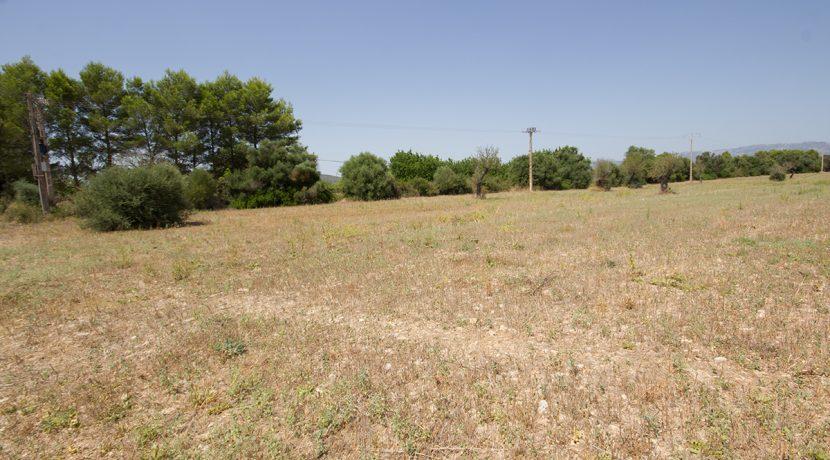uniquevillasmallorca-plot--for-sale-in-Biniali-uvm275.1