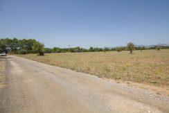 uniquevillasmallorca-plot--for-sale-in-Biniali-uvm275.4