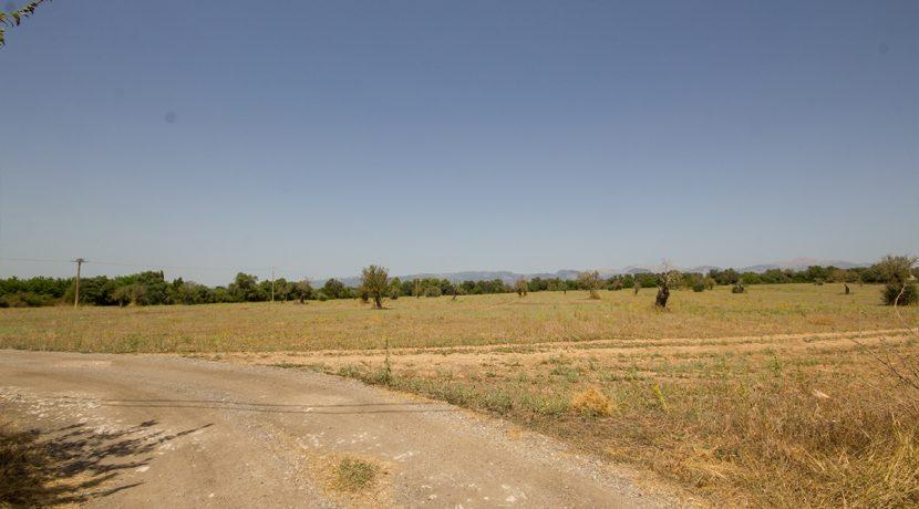 uniquevillasmallorca-plot--for-sale-in-Biniali-uvm275.5